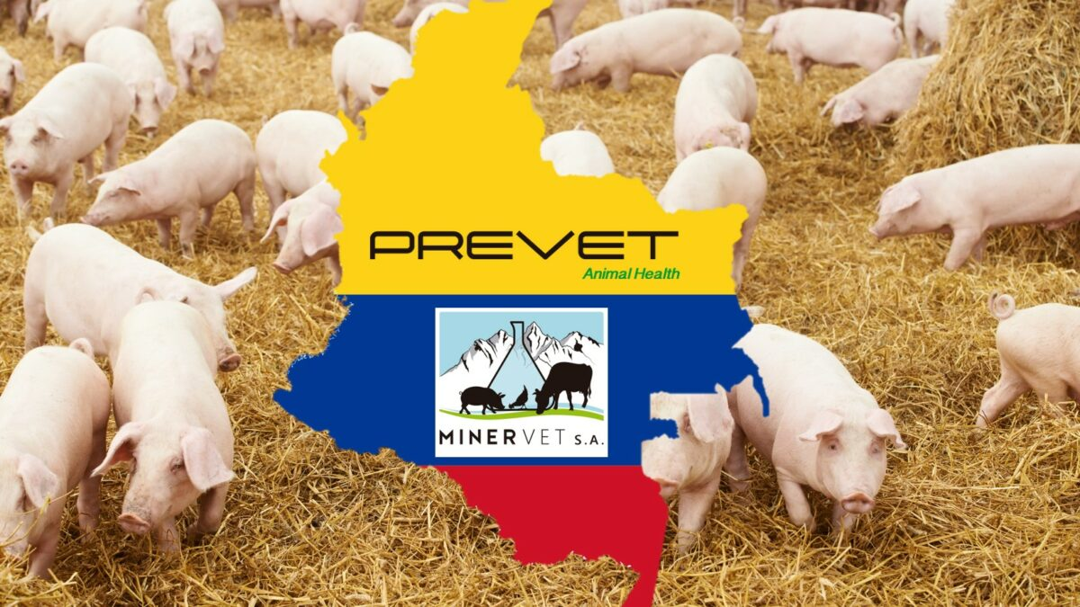 Minervet S.A. starts the commercialization of Minermold in Colombia and gets ready for the arrival of Aisen Plus